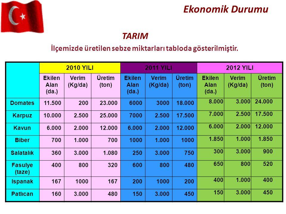 İlçemizde üretilen sebze miktarları tabloda gösterilmiştir.