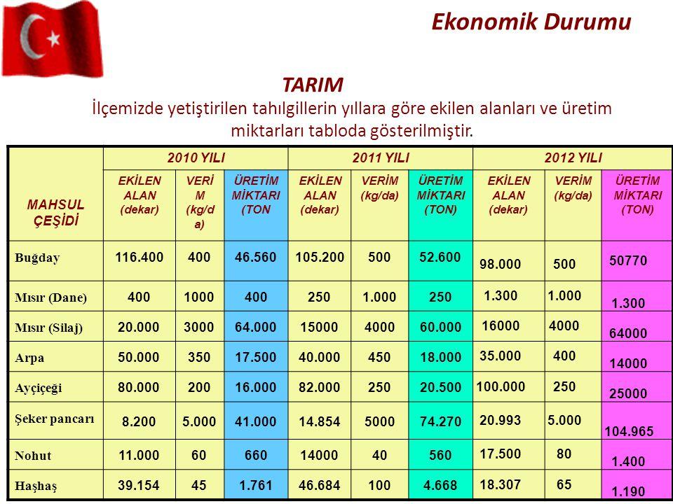 Ekonomik Durumu TARIM. İlçemizde yetiştirilen tahılgillerin yıllara göre ekilen alanları ve üretim miktarları tabloda gösterilmiştir.