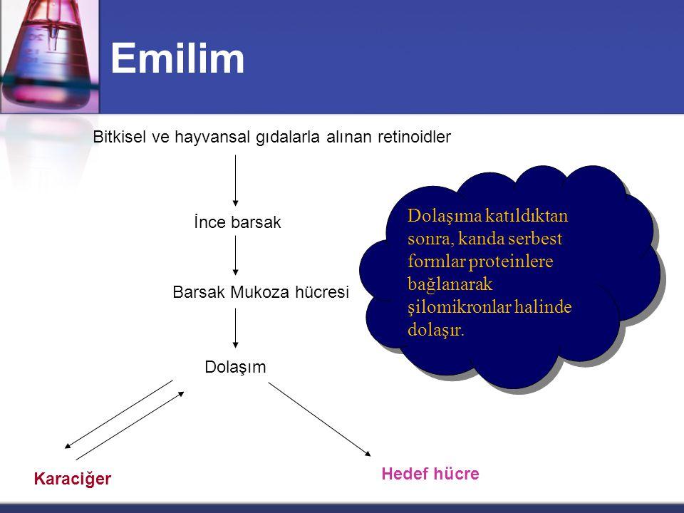 Emilim Bitkisel ve hayvansal gıdalarla alınan retinoidler.