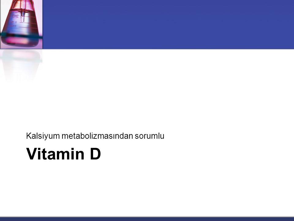 Kalsiyum metabolizmasından sorumlu