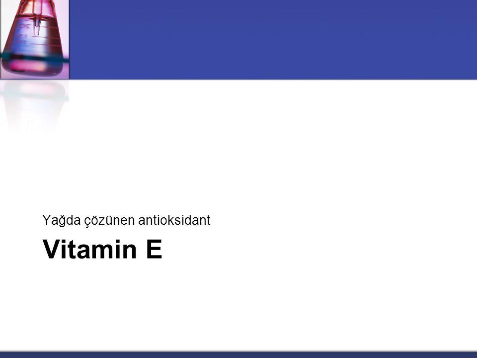 Yağda çözünen antioksidant