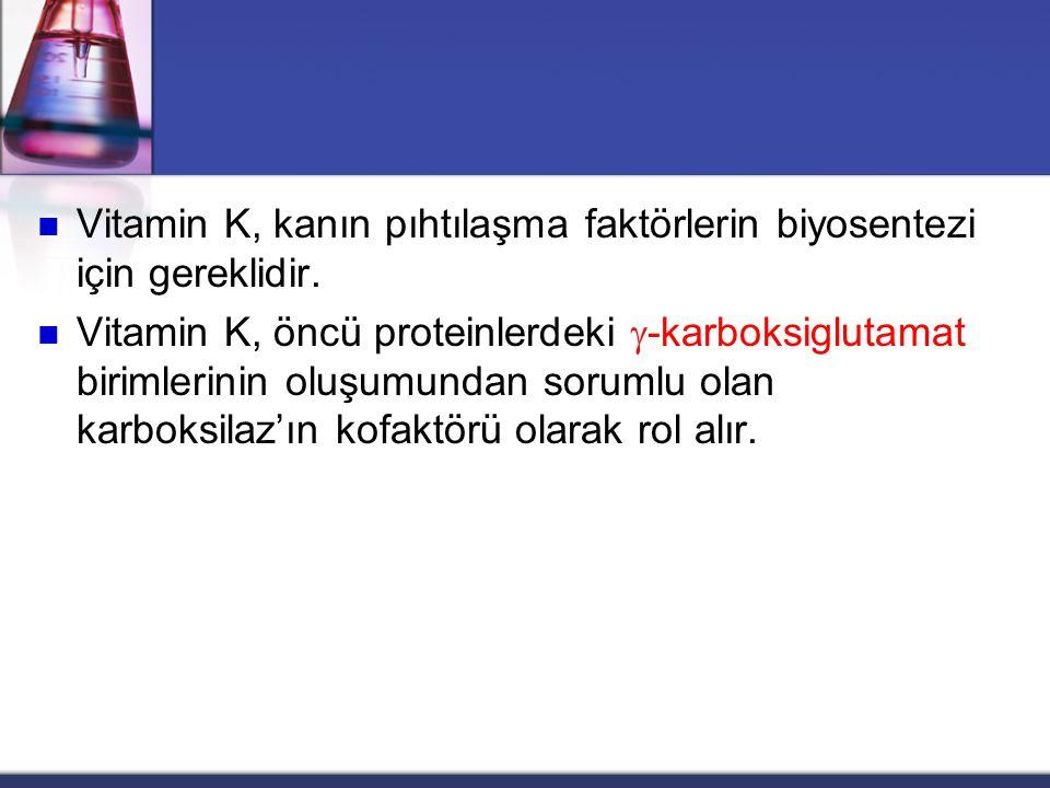 Vitamin K, kanın pıhtılaşma faktörlerin biyosentezi için gereklidir.