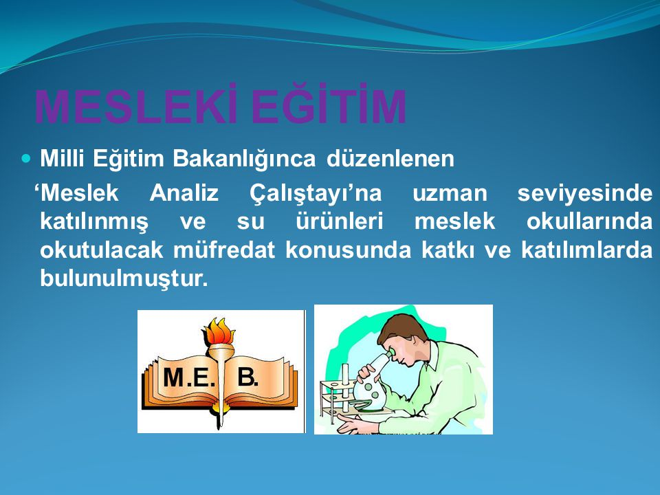 MESLEKİ EĞİTİM Milli Eğitim Bakanlığınca düzenlenen