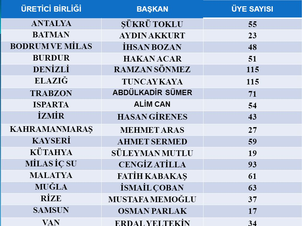 ANTALYA ŞÜKRÜ TOKLU 55 BATMAN AYDIN AKKURT 23 BODRUM VE MİLAS