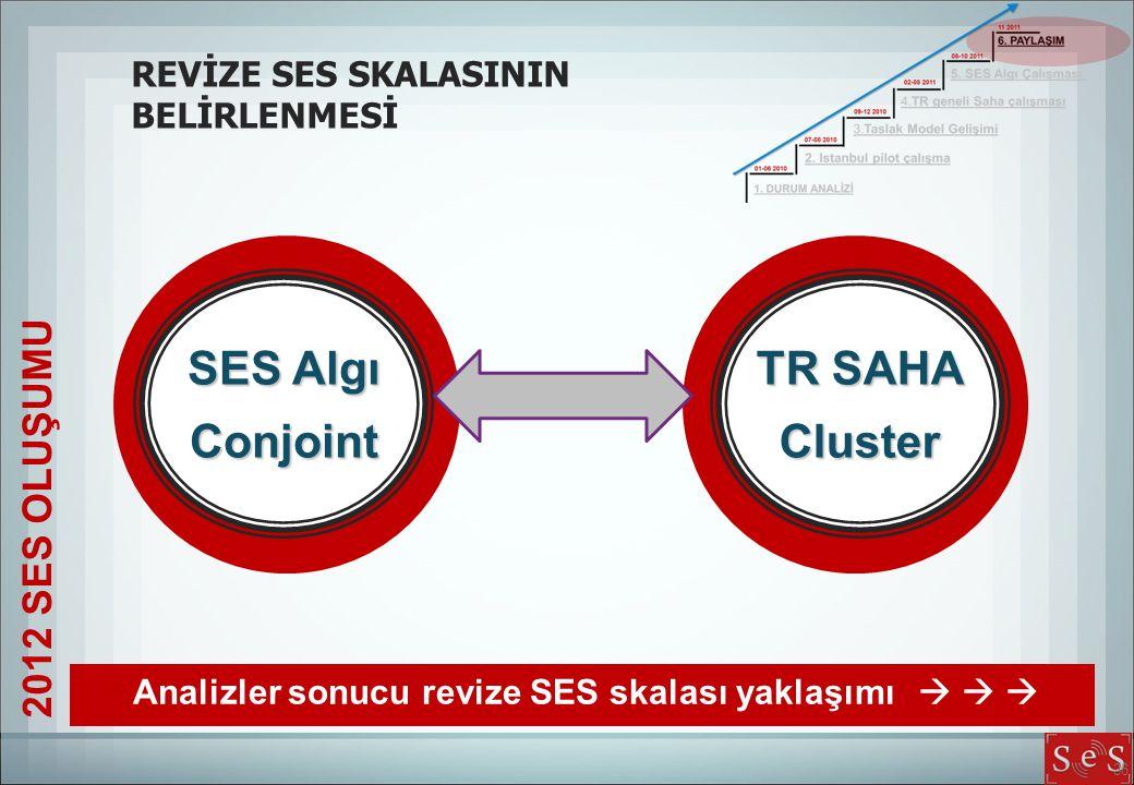 SES Algı Conjoint TR SAHA Cluster