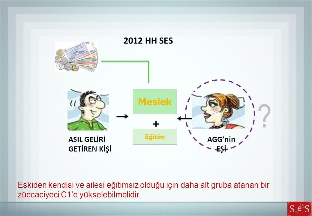 2012 HH SES Meslek + ASIL GELİRİ AGG'nin GETİREN KİŞİ EŞİ