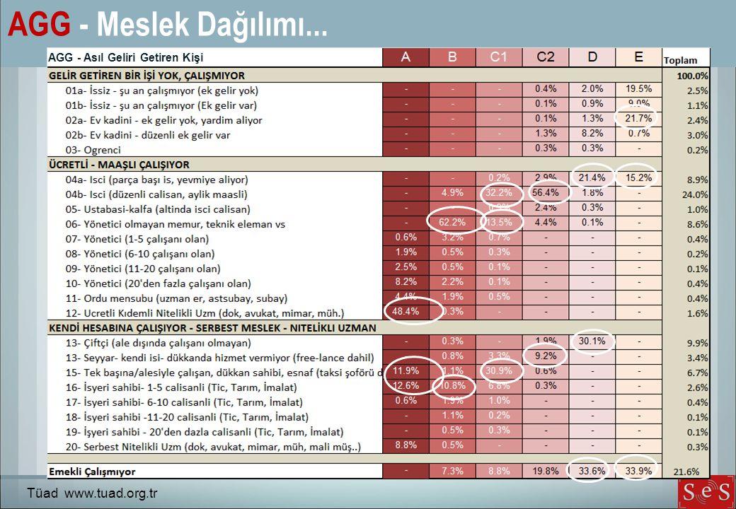 AGG - Meslek Dağılımı... Tüad www.tuad.org.tr