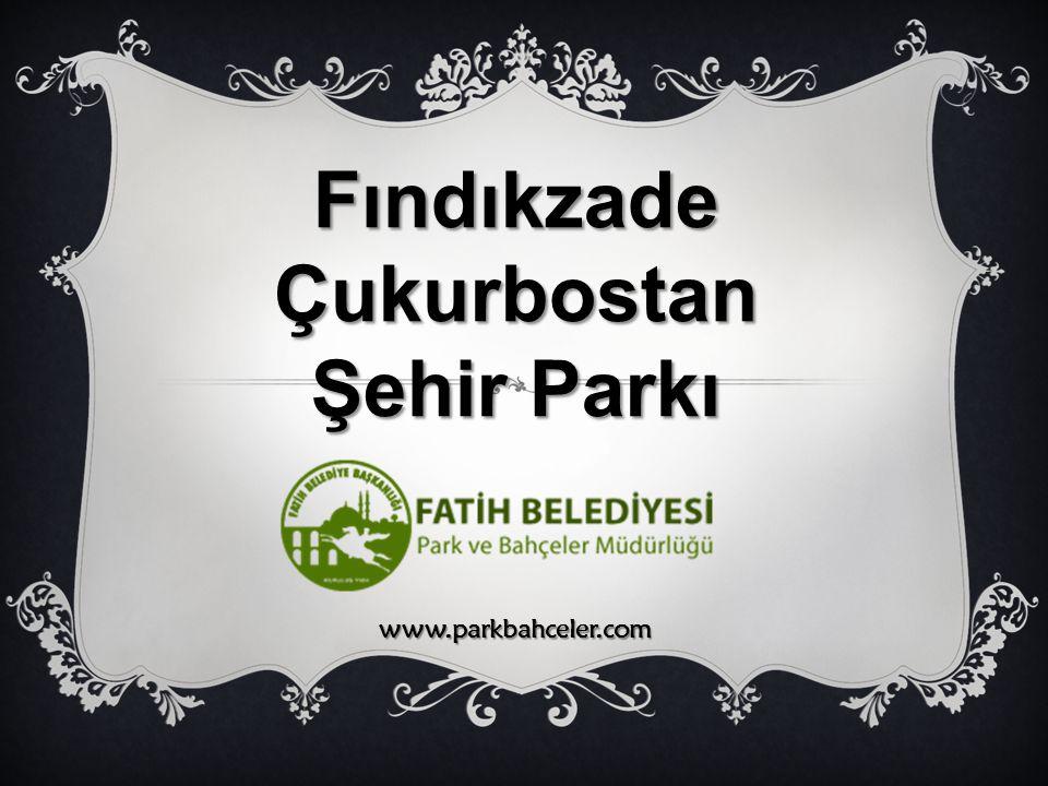 Fındıkzade Çukurbostan
