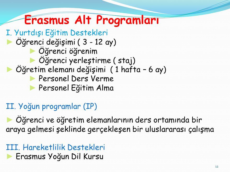 Erasmus Alt Programları