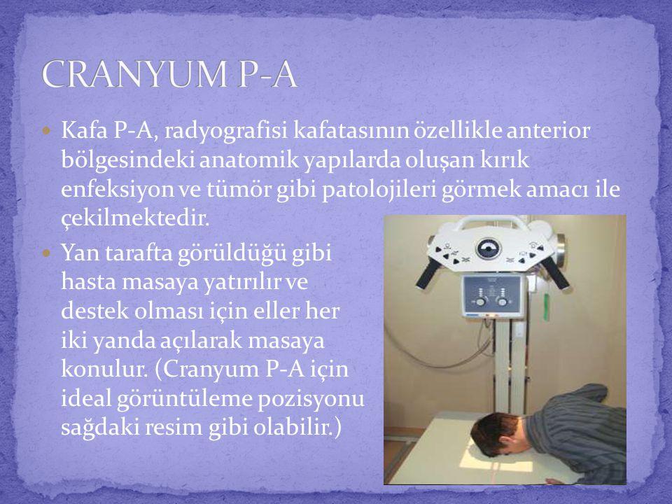 CRANYUM P-A