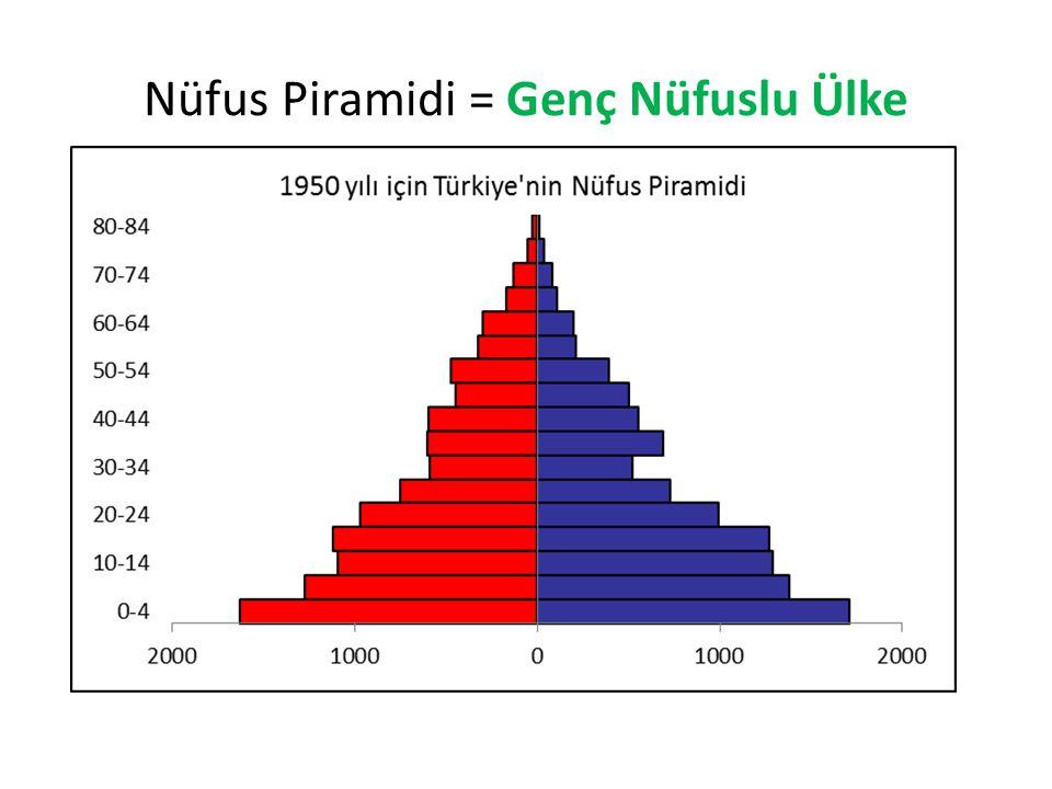Nüfus Piramidi = Genç Nüfuslu Ülke