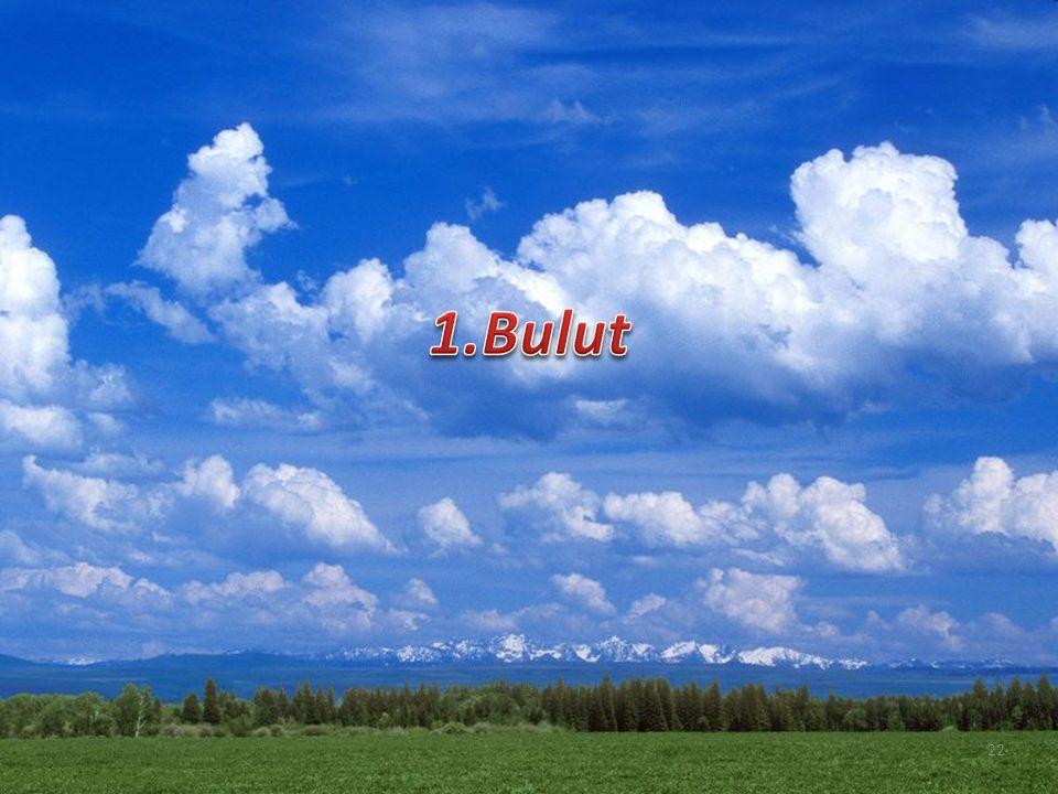 1.Bulut