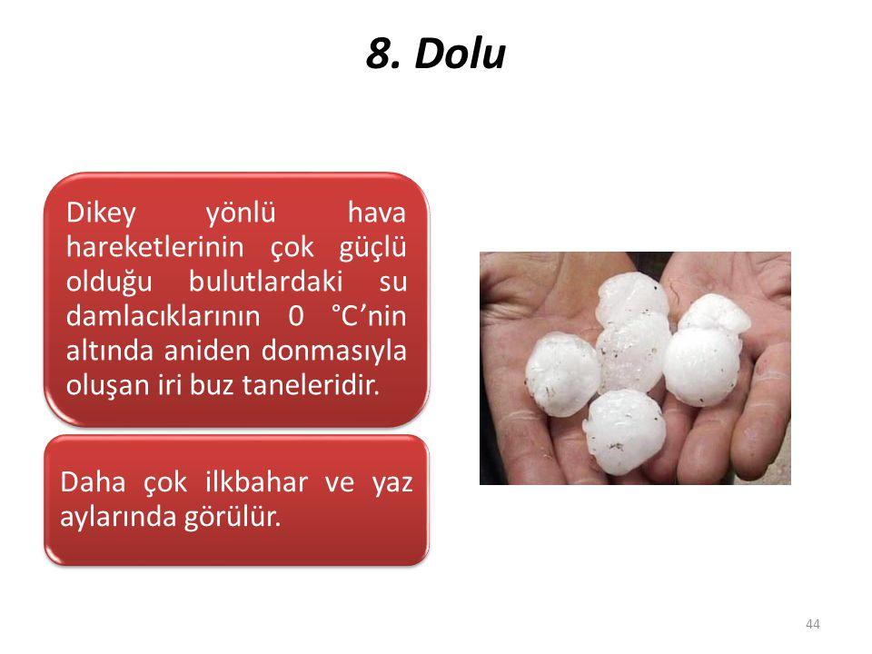 8. Dolu