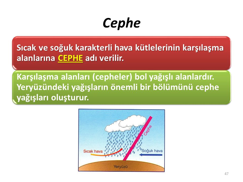 Cephe Sıcak ve soğuk karakterli hava kütlelerinin karşılaşma alanlarına CEPHE adı verilir.