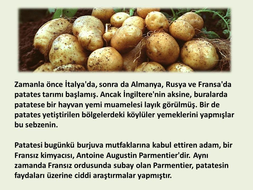 Zamanla önce İtalya da, sonra da Almanya, Rusya ve Fransa da patates tarımı başlamış.