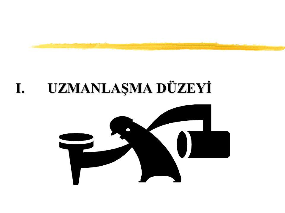 UZMANLAŞMA DÜZEYİ