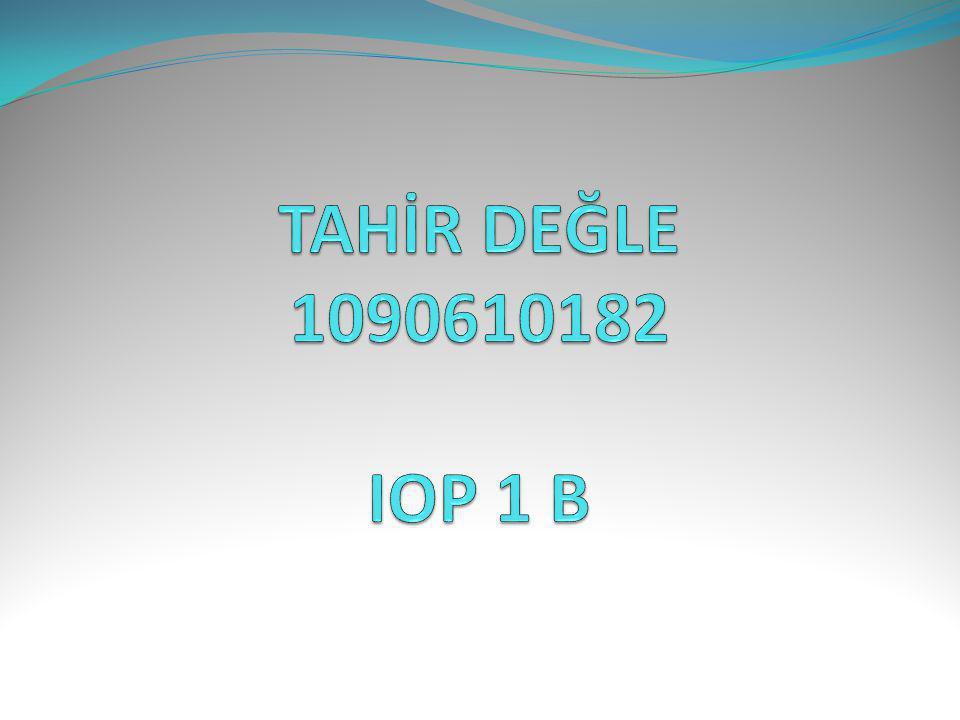 TAHİR DEĞLE 1090610182 IOP 1 B