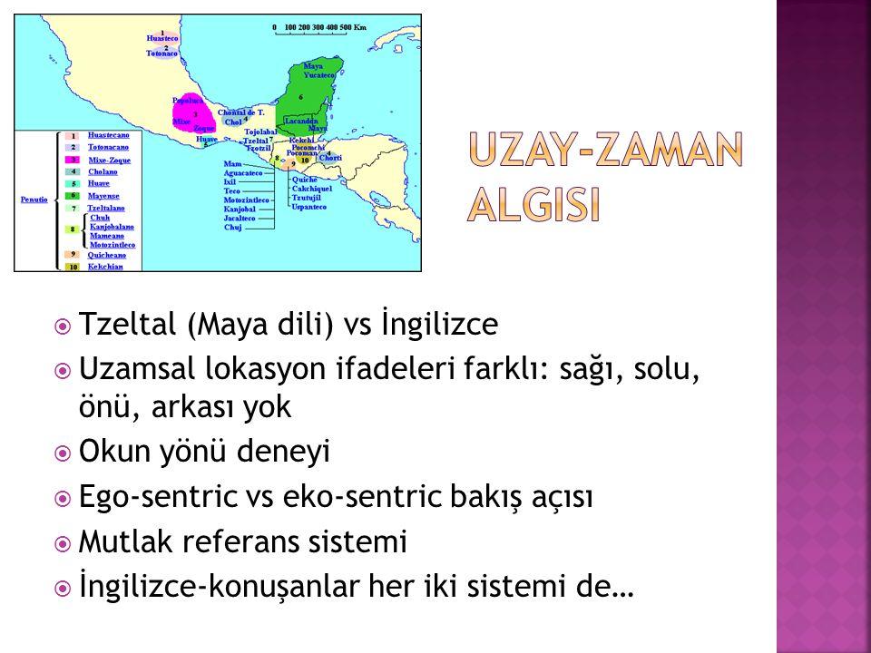 UZAY-ZAMAN ALGISI Tzeltal (Maya dili) vs İngilizce