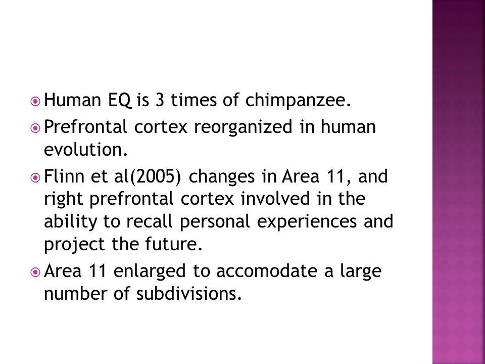 Human EQ is 3 times of chimpanzee.