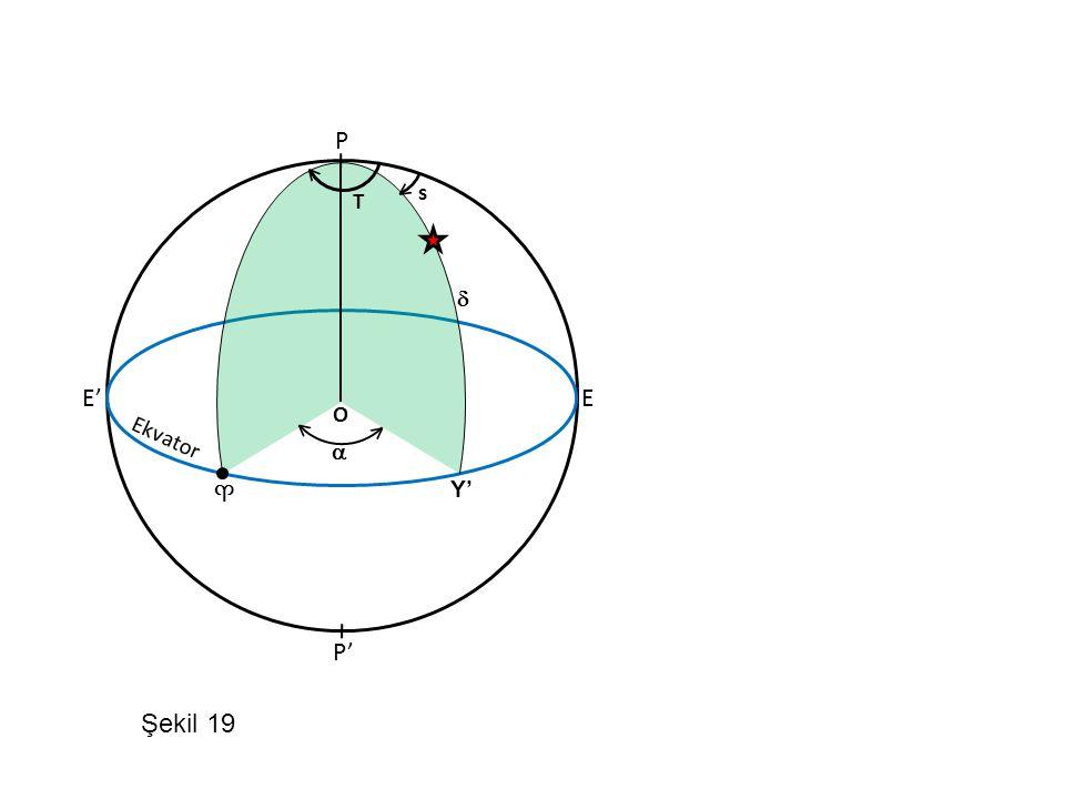 P < < s T  E' E O < Ekvator <  ♈ Y' P' Şekil 19