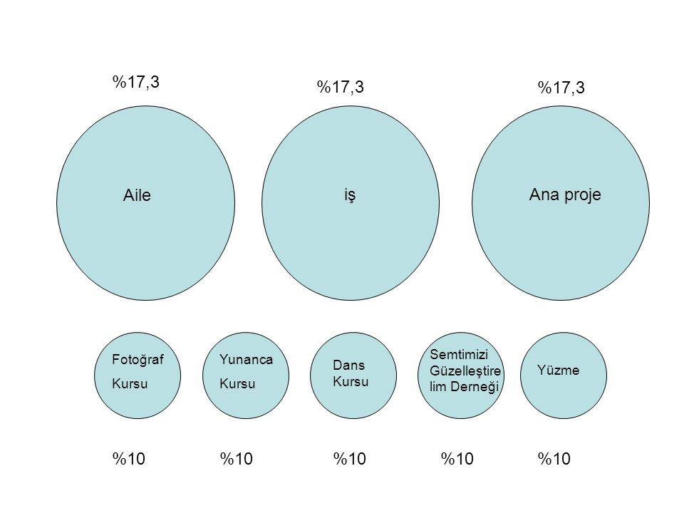%17,3 %17,3 %17,3 Aile iş Ana proje %10 %10 %10 %10 %10