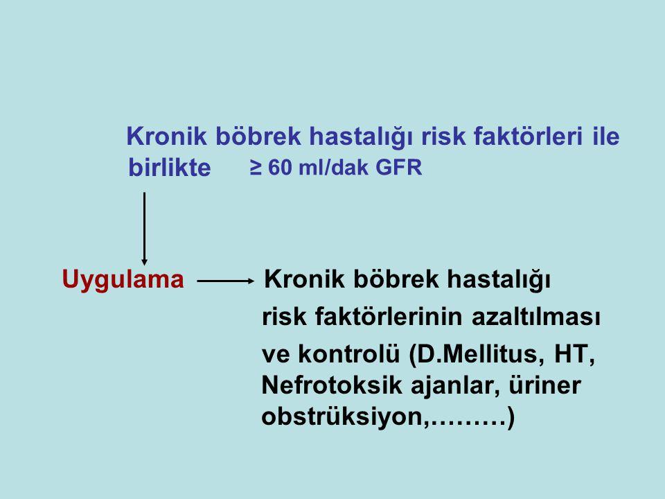 Kronik böbrek hastalığı risk faktörleri ile birlikte