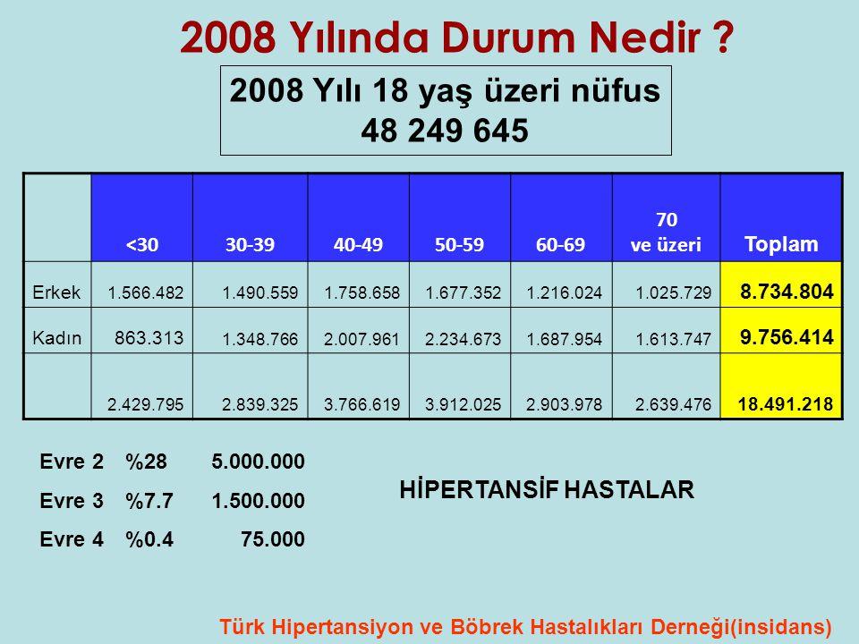 2008 Yılında Durum Nedir 2008 Yılı 18 yaş üzeri nüfus 48 249 645