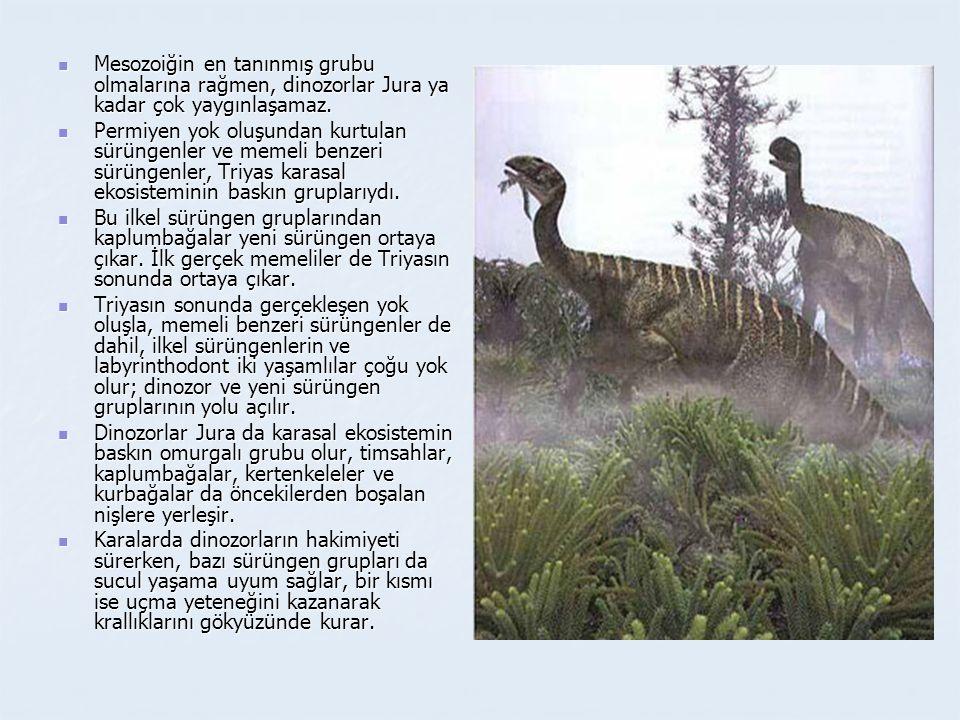 Mesozoiğin en tanınmış grubu olmalarına rağmen, dinozorlar Jura ya kadar çok yaygınlaşamaz.