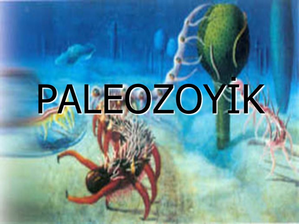 PALEOZOYİK