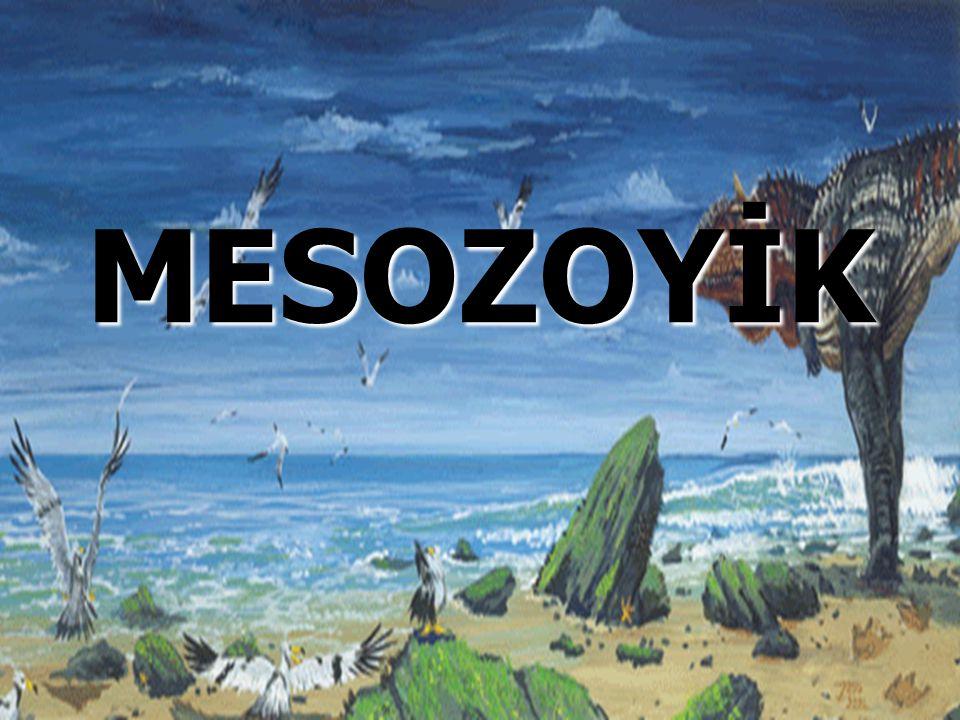 MESOZOYİK