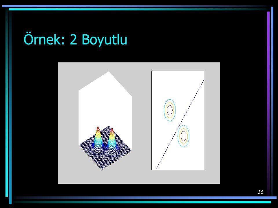Örnek: 2 Boyutlu