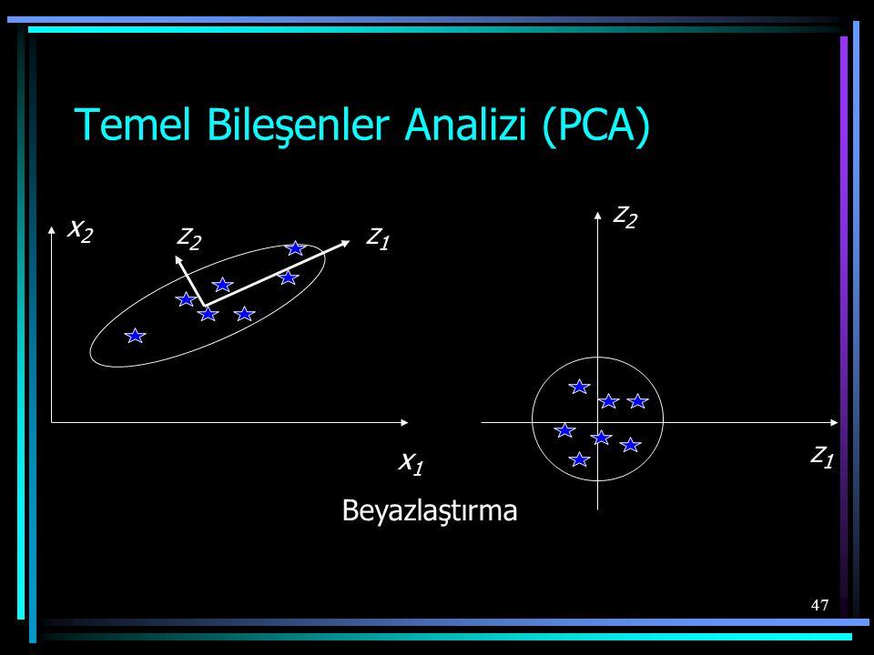 Temel Bileşenler Analizi (PCA)