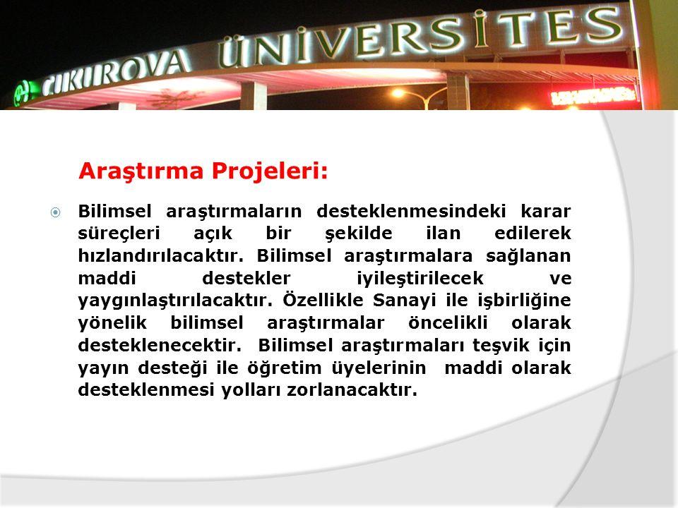 Araştırma Projeleri: