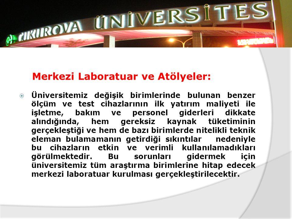 Merkezi Laboratuar ve Atölyeler: