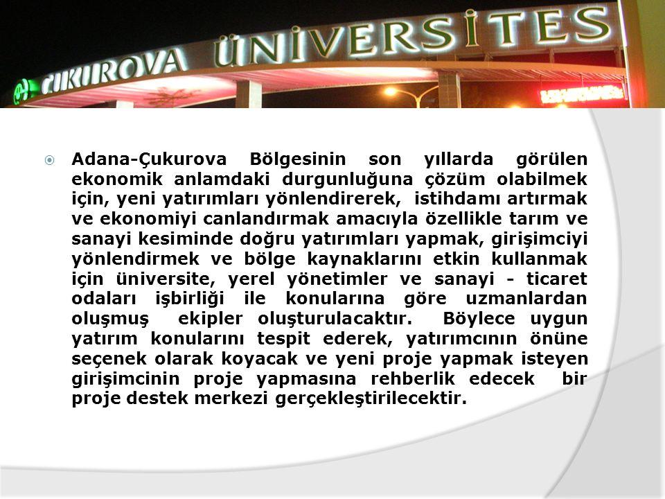 Adana-Çukurova Bölgesinin son yıllarda görülen ekonomik anlamdaki durgunluğuna çözüm olabilmek için, yeni yatırımları yönlendirerek, istihdamı artırmak ve ekonomiyi canlandırmak amacıyla özellikle tarım ve sanayi kesiminde doğru yatırımları yapmak, girişimciyi yönlendirmek ve bölge kaynaklarını etkin kullanmak için üniversite, yerel yönetimler ve sanayi - ticaret odaları işbirliği ile konularına göre uzmanlardan oluşmuş ekipler oluşturulacaktır.