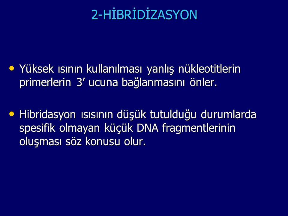 2-HİBRİDİZASYON Yüksek ısının kullanılması yanlış nükleotitlerin primerlerin 3' ucuna bağlanmasını önler.