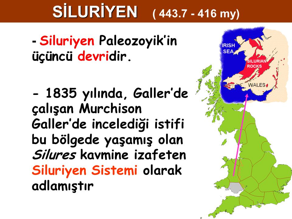 SİLURİYEN ( 443.7 - 416 my) - Siluriyen Paleozoyik'in üçüncü devridir.