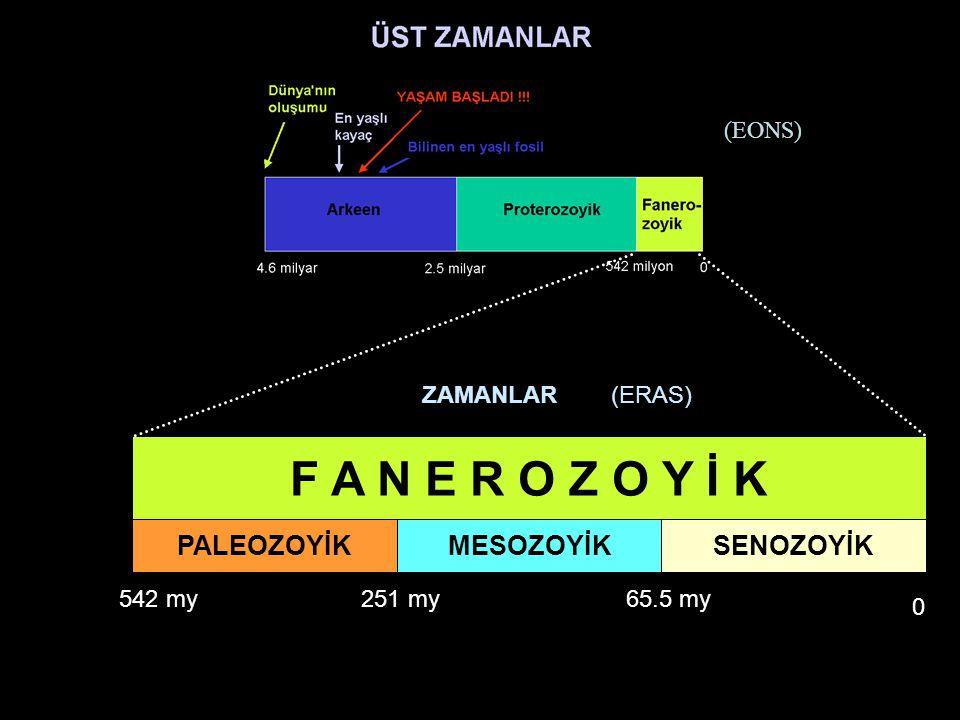 F A N E R O Z O Y İ K PALEOZOYİK MESOZOYİK SENOZOYİK (EONS) ZAMANLAR