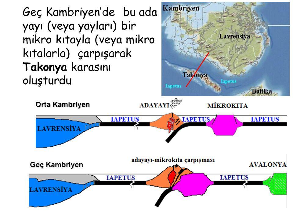 Geç Kambriyen'de bu ada yayı (veya yayları) bir mikro kıtayla (veya mikro kıtalarla) çarpışarak Takonya karasını oluşturdu