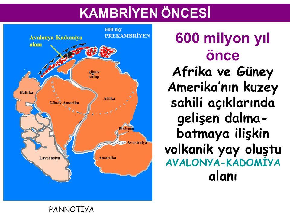 AVALONYA-KADOMİYA alanı