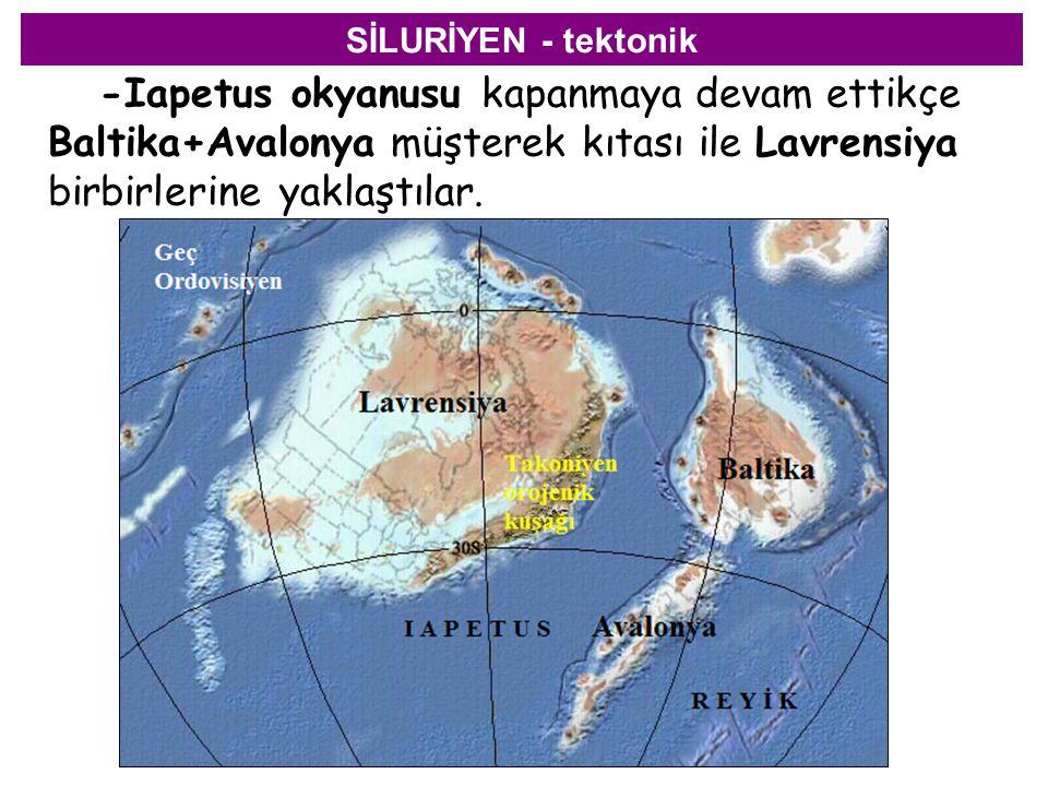 SİLURİYEN - tektonik -Iapetus okyanusu kapanmaya devam ettikçe Baltika+Avalonya müşterek kıtası ile Lavrensiya birbirlerine yaklaştılar.