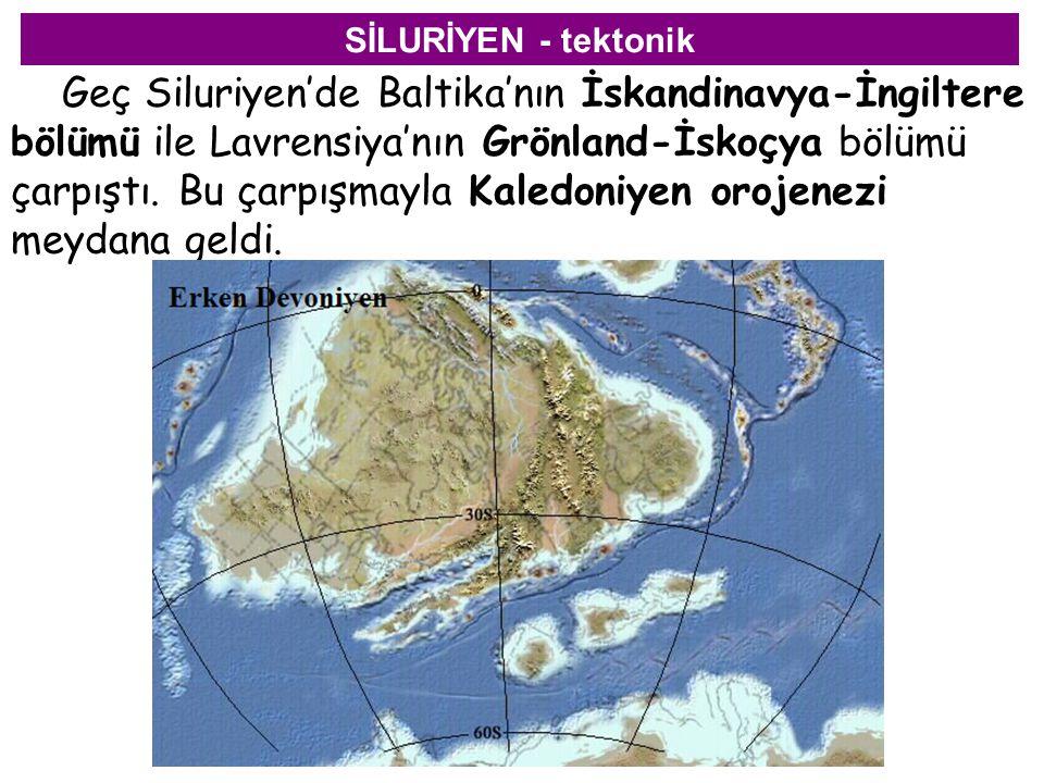 SİLURİYEN - tektonik