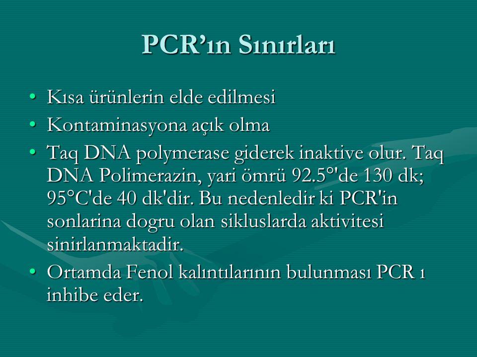 PCR'ın Sınırları Kısa ürünlerin elde edilmesi Kontaminasyona açık olma