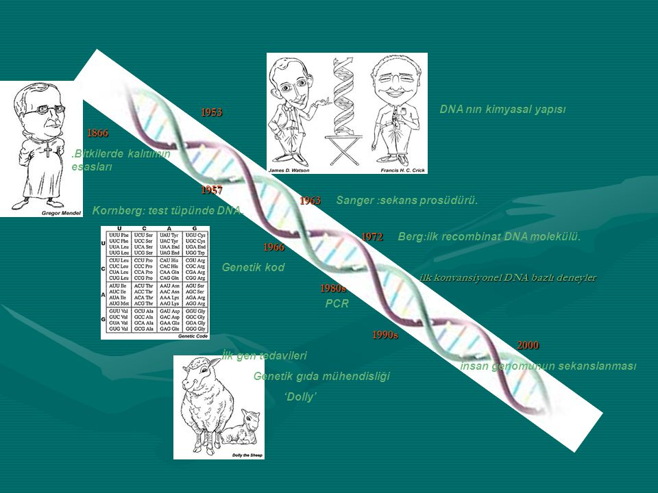 1953 1866 1957 1963 1972 1966 1980s 1990s 2000 DNA nın kimyasal yapısı