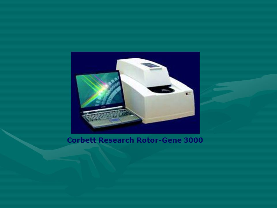 Corbett Research Rotor-Gene 3000