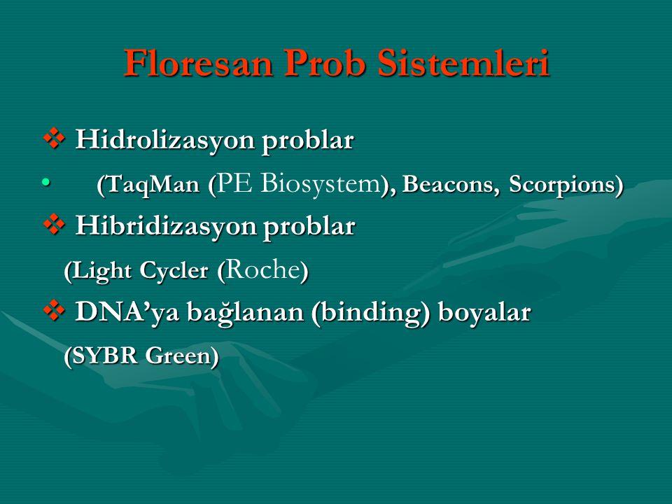Floresan Prob Sistemleri