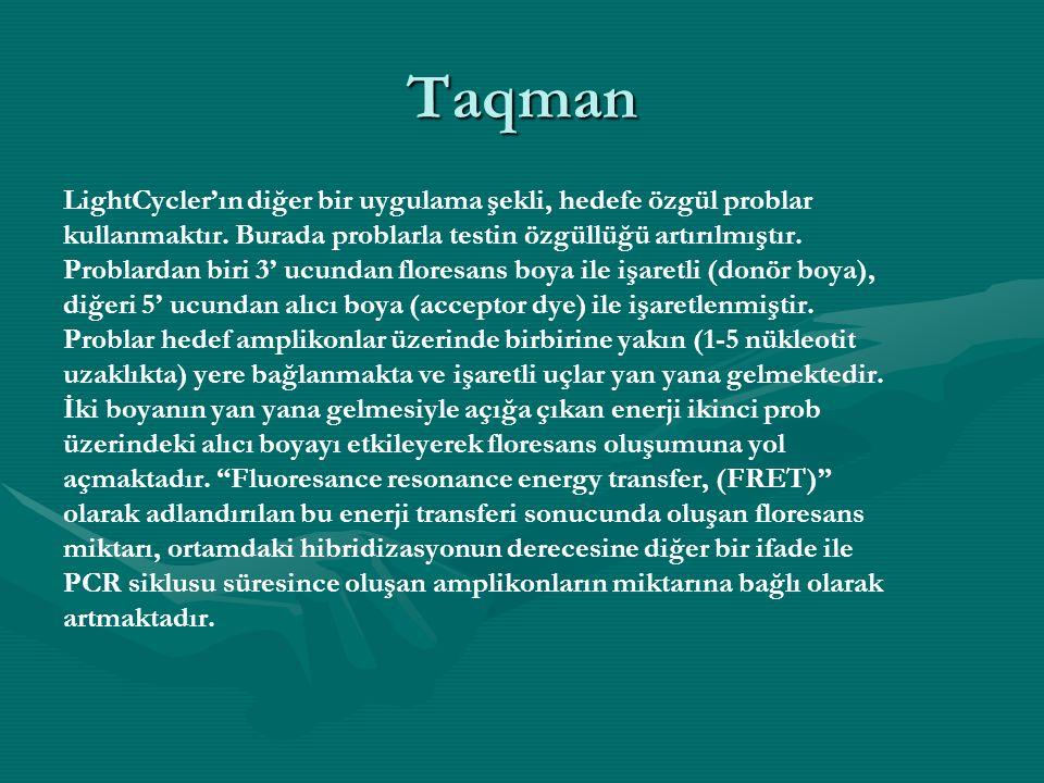 Taqman LightCycler'ın diğer bir uygulama şekli, hedefe özgül problar