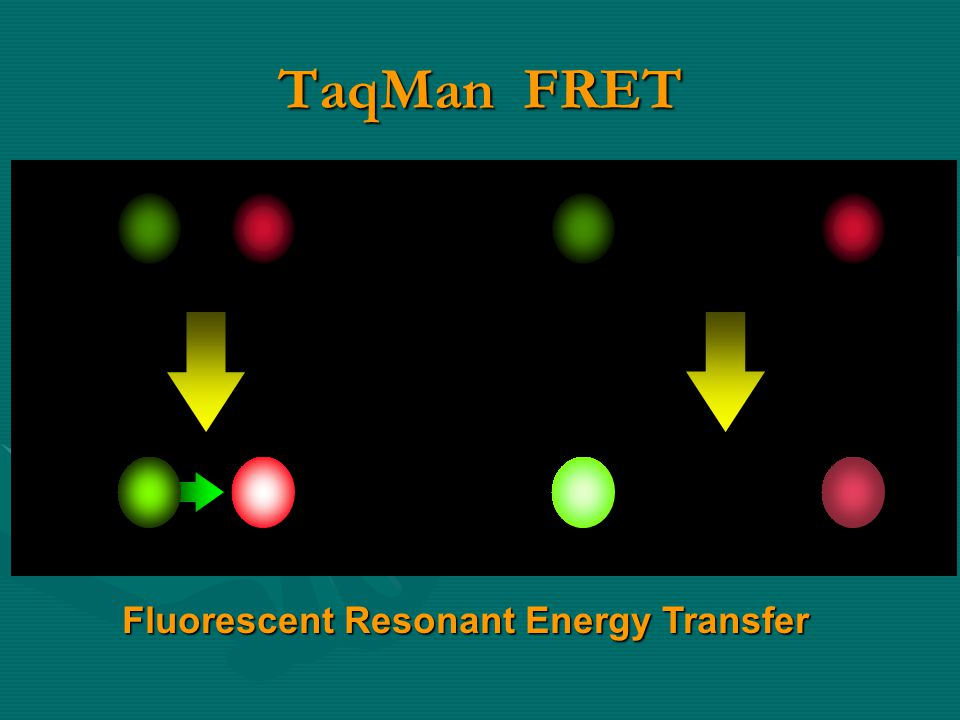 Fluorescent Resonant Energy Transfer