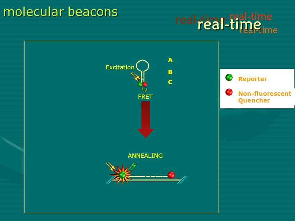 real-time real-time molecular beacons real-time real-time A B C