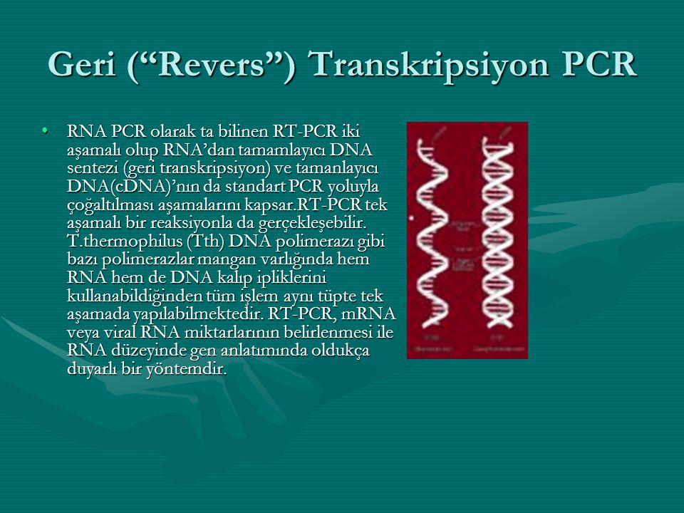 Geri ( Revers ) Transkripsiyon PCR